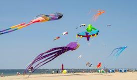 Stranieri di volo e aquiloni della creatura del mare al fest dell'aquilone del Michigan Fotografie Stock Libere da Diritti