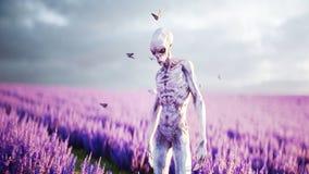 Straniero con le farfalle nel giacimento della lavanda concetto del UFO rappresentazione 3d illustrazione di stock