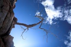 Strappo sulla roccia Fotografia Stock Libera da Diritti