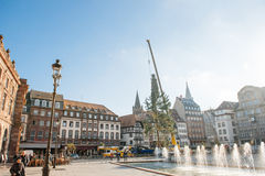 Strasbourg Christmas Tree Erected. Strasbourg, France - November 5, 2013: Installation of a giant Christmas tree by cranes on the Place Kleber in Strasbourg's Stock Photography