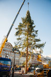 Strasbourg Christmas Tree Erected. Strasbourg, France - November 5, 2013: Installation of a giant Christmas tree by cranes on the Place Kleber in Strasbourg's Royalty Free Stock Photos