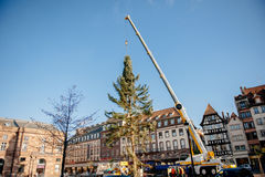 Strasbourg Christmas Tree Erected. Strasbourg, France - November 5, 2013: Installation of a giant Christmas tree by cranes on the Place Kleber in Strasbourg's Royalty Free Stock Images
