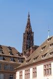 Strasbourg domkyrka Arkivfoto
