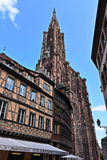 Strasbourg domkyrka Royaltyfri Fotografi