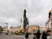 Central Christmas Tree Install in Place Kleber. STRASBOURG, FRANCE - OCT 30, 2017: People admiring Strasbourg Christmas Tree Install in central Place Kleber Royalty Free Stock Photos