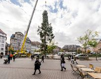 Central Christmas Tree Install in Place Kleber. STRASBOURG, FRANCE - OCT 30, 2017: People looking at Strasbourg Christmas Tree Install in central Place Kleber Stock Photography