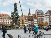 Central Christmas Tree Install in Place Kleber. STRASBOURG, FRANCE - OCT 30, 2017: Senior female taking photo of Strasbourg Christmas Tree Install in central Royalty Free Stock Image