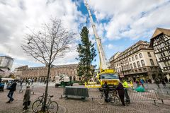 Central Christmas Tree Install in Place Kleber. STRASBOURG, FRANCE - OCT 30, 2017: Tall crane installing Strasbourg Christmas Tree in central Place Kleber Square Stock Photography