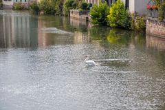 Strasbourg, water canal in Petite France area Royalty Free Stock Photo