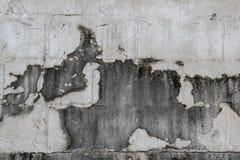 Straszna ściana, horror ściana, Brudzi ściennych tła zdjęcia royalty free