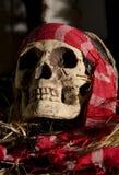 Straszna czaszki głowa Zdjęcia Royalty Free