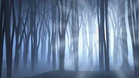 Straszna lasowa scena Zdjęcia Royalty Free