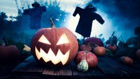 Straszna pomarańczowa Halloweenowa bania na ciemnym polu z strach na wróble obraz royalty free