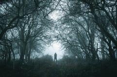 Straszna samotna kapturzasta postać na ścieżce w mgłowym lesie w zimie z zmrokiem uciszającym redaguje zdjęcia stock