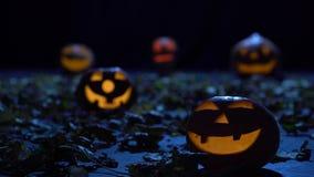 Straszne banie na Halloween w ciemnym lesie palą jak lampiony zdjęcie wideo