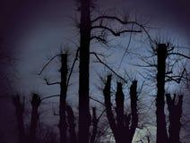 Straszni nadzy drzewa Fotografia Stock