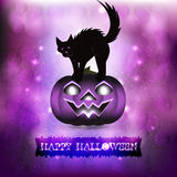 Straszny kot w purpurowym tle Obrazy Royalty Free