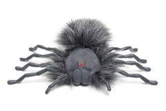 straszny pająk ii Zdjęcia Royalty Free
