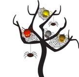 Straszny pająk sieci drzewo, Drzewny wektor Obrazy Stock