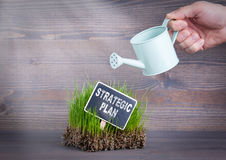 Strategic Plan concept. Fresh and green grass on wood background royalty free stock image