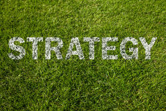 Strategy text on meadow Stock Photo