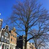Straten in Amsterdam royalty-vrije stock fotografie