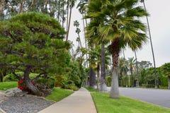 Straten van Beverly Hills, Californië stock afbeelding