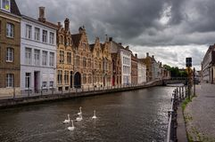 Straten van Brugge swans royalty-vrije stock fotografie