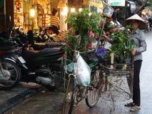 Straten van het Oude Kwart van Hanoi ` s Royalty-vrije Stock Foto's
