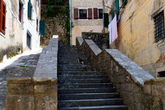 Straten van Kotor, Montenegro Mening over de oude stad van stadsunesco binnen Royalty-vrije Stock Foto