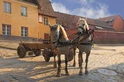 Straten van sighisoara-Transsylvanië, Roemenië Royalty-vrije Stock Afbeeldingen
