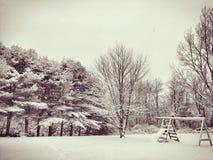 Stratham Snowday Στοκ Εικόνα