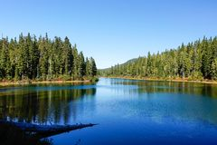 Strathcona Provincial Park: Forbidden Plateau ~ Paradise Meadows Stock Image
