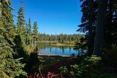 Strathcona Provincial Park: Forbidden Plateau ~ Paradise Meadows Stock Photos