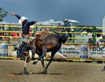 Strathmore-Ansturm, Alberta, Kanada Lizenzfreie Stockfotos