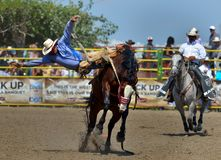 Strathmore Stampede , Alberta , Canada Royalty Free Stock Images