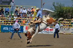 Strathmore Stampede , Alberta , Canada Royalty Free Stock Photo