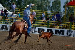 Strathmore Stampede , Alberta , Canada. Break out the boots, belt buckles and cowboy hats and check out the Strathmore Stampede. Or, we double dare you to run Stock Image