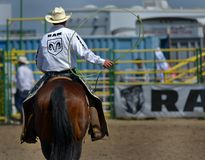 Strathmore Stampede , Alberta , Canada. A cowboy, member staff of exhibition riding his horse Royalty Free Stock Image
