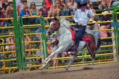 Strathmore  stampede Stock Photos