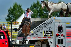 Strathmore  stampede. Strathmore  rodeo .  A cowboy riding and performing a entertainment show during breaks Stock Images
