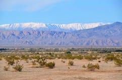 Strati del deserto Immagine Stock