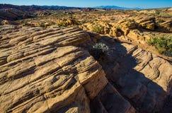 Strati delle formazioni rocciose nel sud-ovest Stati Uniti Immagine Stock