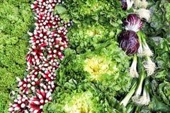 Strati delle verdure variopinte crude Fotografia Stock Libera da Diritti