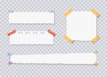 Strati di carta dei bordi lacerati di vettore, autoadesivi allegati dell'appunto, illustrazioni messe illustrazione di stock