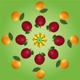 Strati di frutti Fotografia Stock