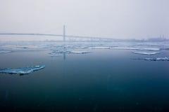 Strati di ghiaccio sul Detroit River Fotografia Stock Libera da Diritti