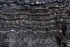 Strati ondulati neri di roccia Fotografie Stock Libere da Diritti