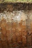 Strati sotterranei del terreno Fotografia Stock