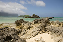Stratified calcarenite at Lagoon Beach Lord Howe Island Royalty Free Stock Photo